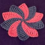 Цветок с разноцветными лепестками