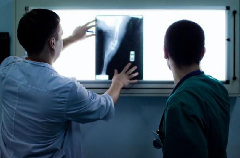 Животным тоже делают рентген