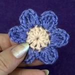 Маленький двухцветный цветок
