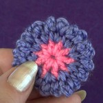 Двухцветный пушистый цветочек